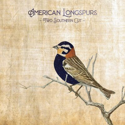 American Longspurs - Two Southern Cut