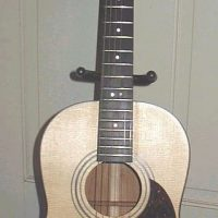 Charles Wolff Model 08 Parlor Guitar