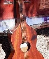 Reuter Hawaiian Guitar